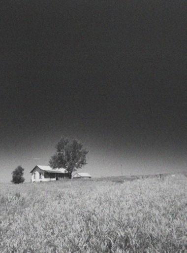 homestead-2